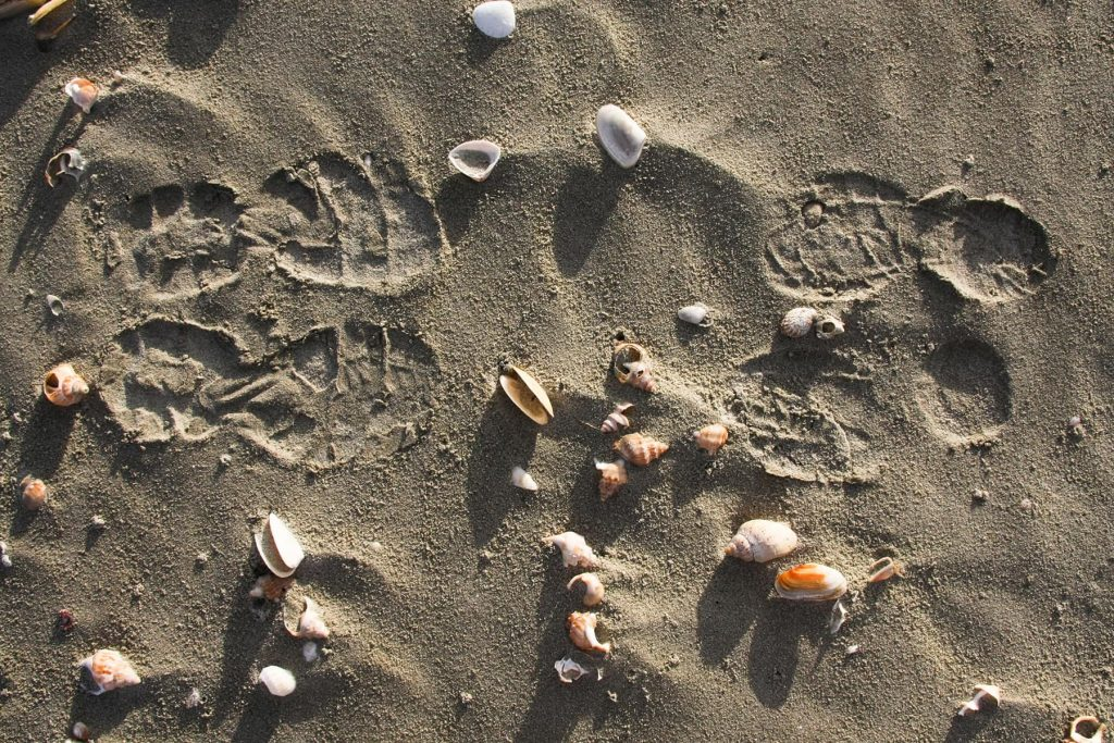 shoe footprints in the sand