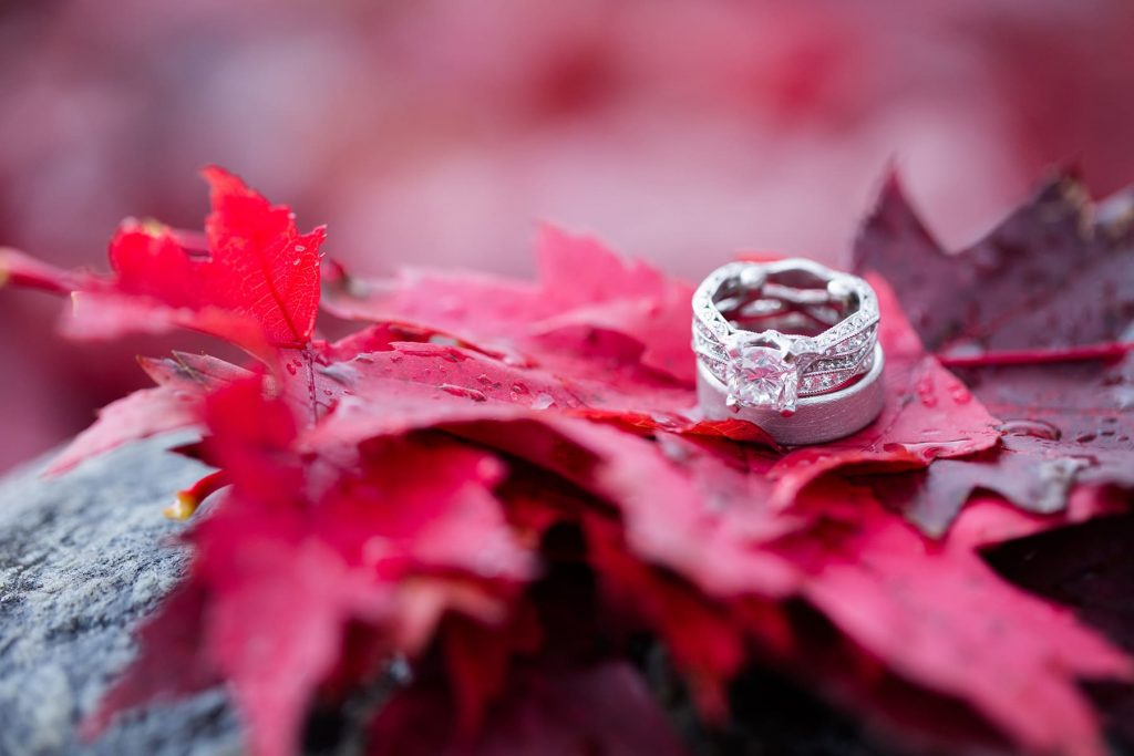 wedding rings and an engagement ring on top of the fall red leaves during peak season
