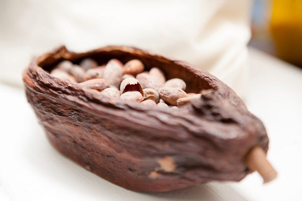 a chocolate pod