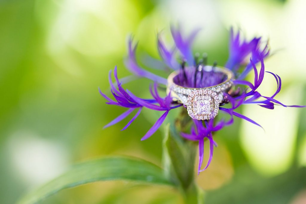 a ring on a purple flower